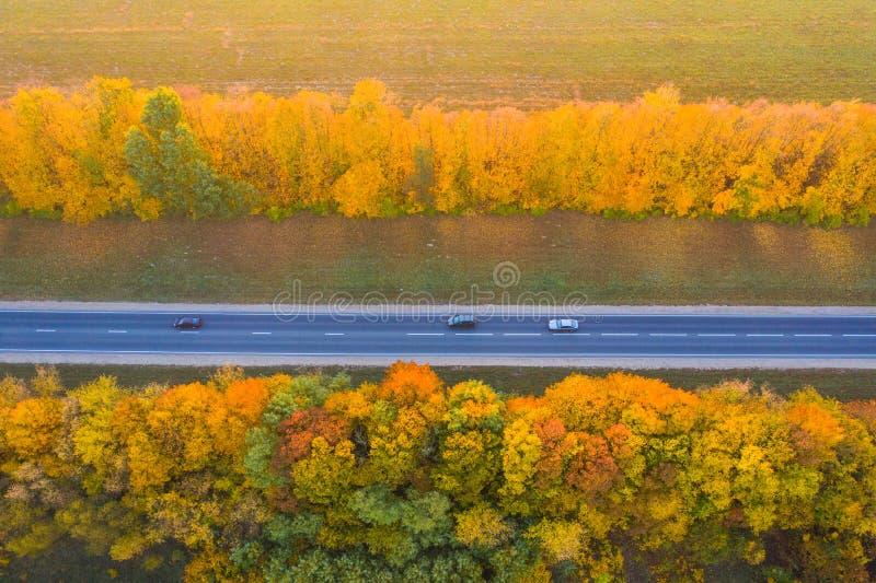 Straße mit beweglichen Autos Schattenbild des kauernden Geschäftsmannes Gerade Straße mit Bäumen mit gelbem Laub lizenzfreies stockfoto