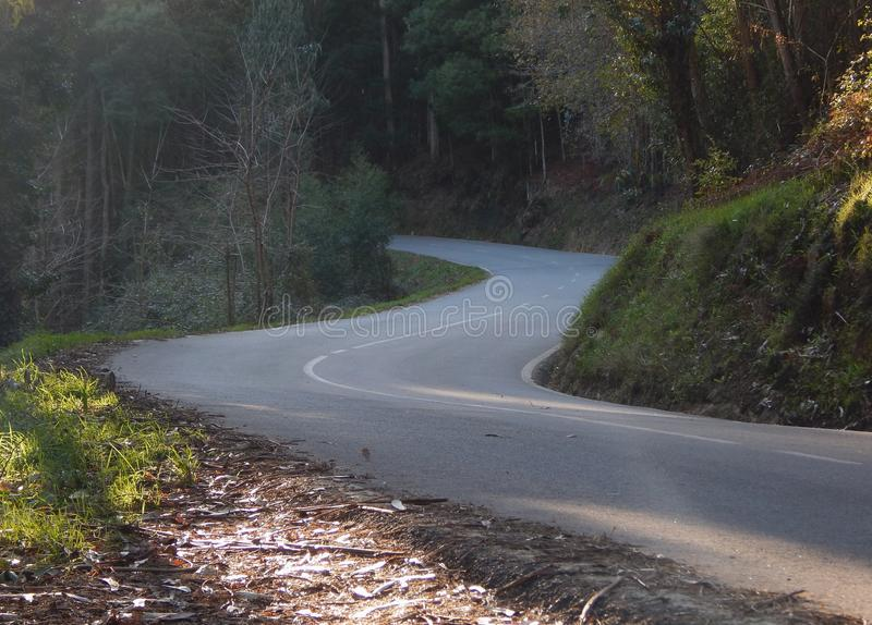 Straße mit Kurve in s lizenzfreies stockfoto