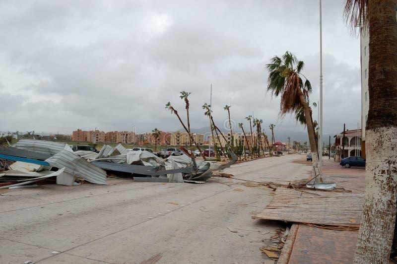 Straße mit vielen schädigenden Palmen herum lizenzfreie stockfotos