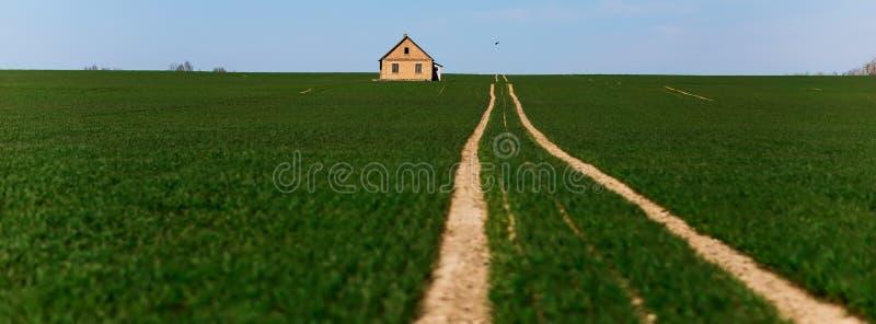 Straße mitten in einem grünen Feld lizenzfreie stockfotos