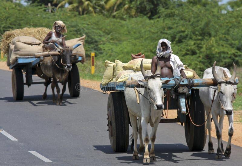Straße in Tamil Nadu, Indien lizenzfreie stockfotografie