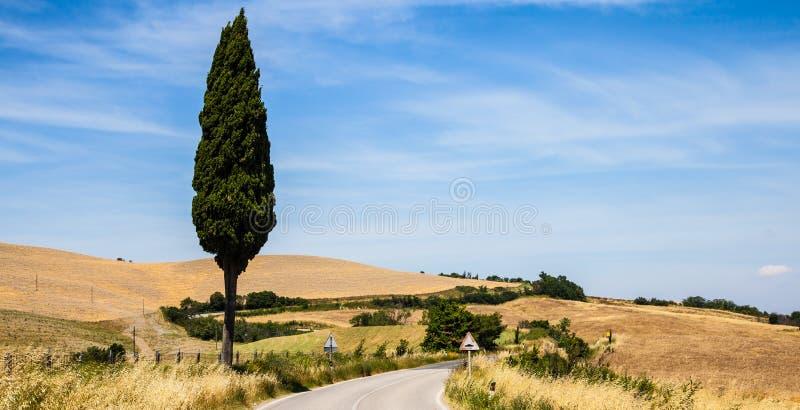 Straße in Toskana stockfotos