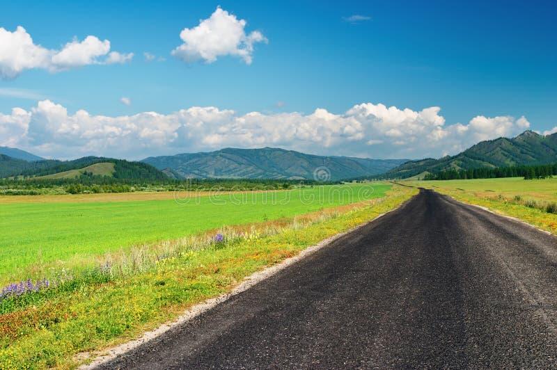Straße und grünes Feld stockfotografie