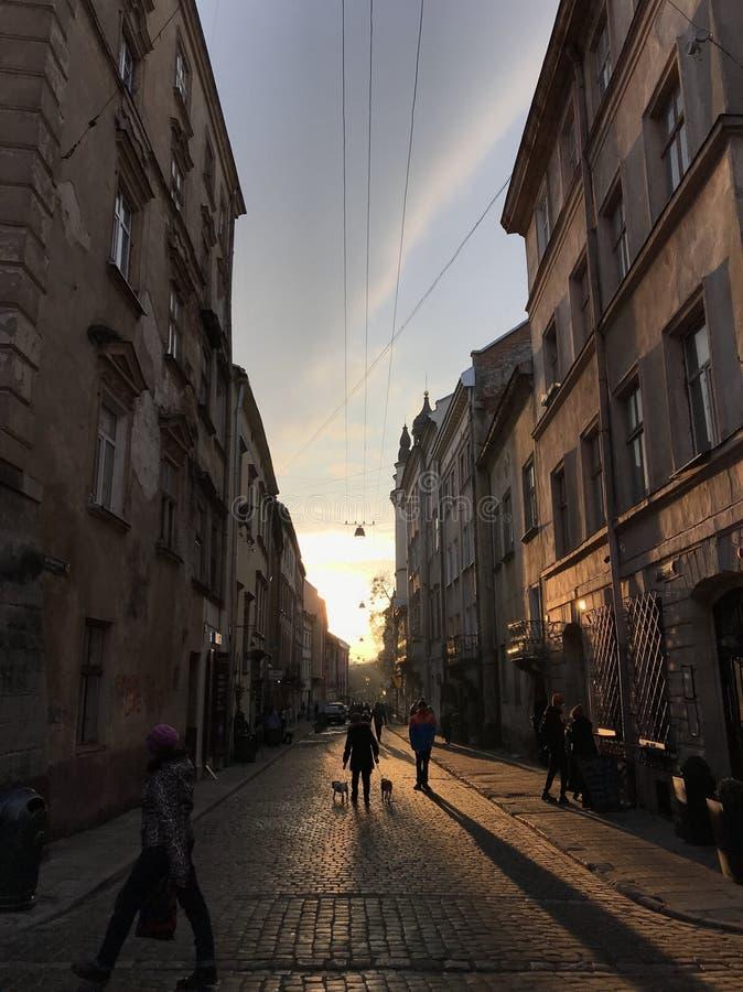Straße von Lemberg lizenzfreies stockfoto