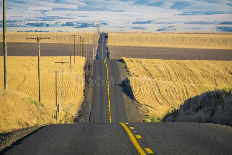 Straße, Weizenfelder, Washington State stockfotos