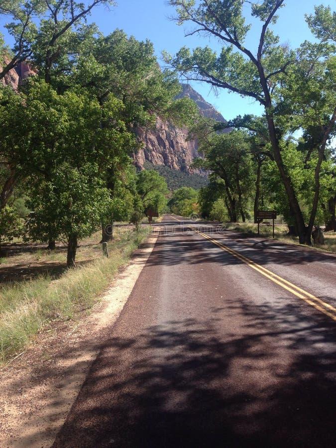 Straße - Zion National-Park lizenzfreie stockfotografie