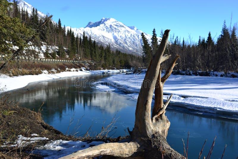 Straße zu Eagle River Park mit Baumstamm, Alaska stockfotos