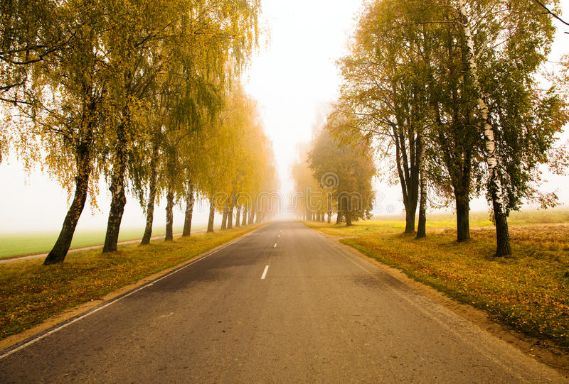Straße zu einem Nebel (Herbst) lizenzfreie stockbilder