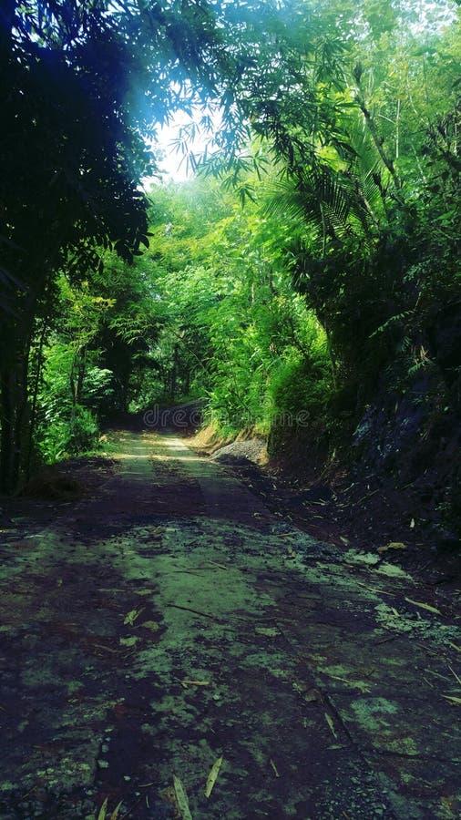 Straße zum Hügel lizenzfreie stockfotos