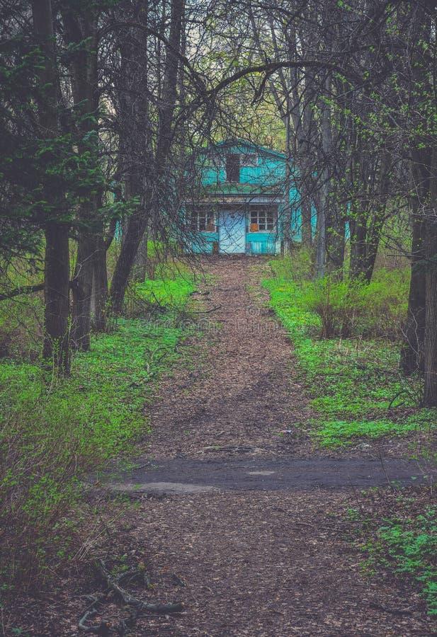 Stra?e zum Haus im Wald lizenzfreies stockbild
