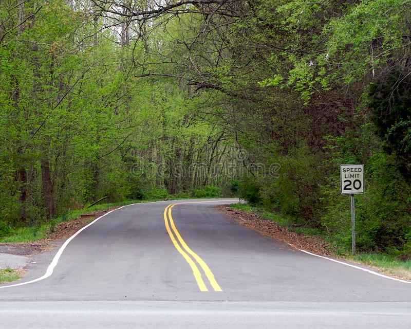 Straße zum Wald stockfotos