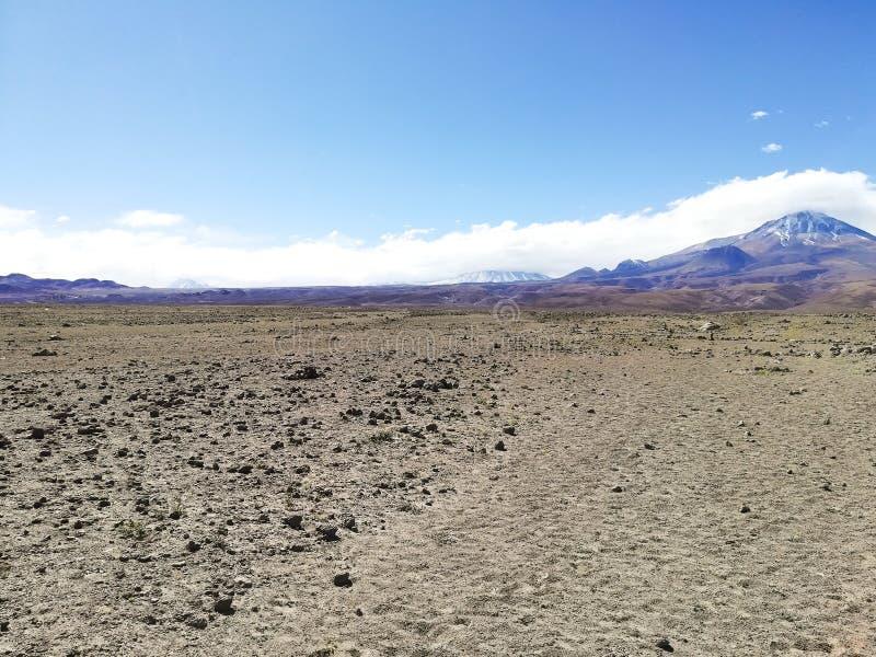 Straße zur natürlichen Reserve des Flamingos, Chile lizenzfreie stockbilder