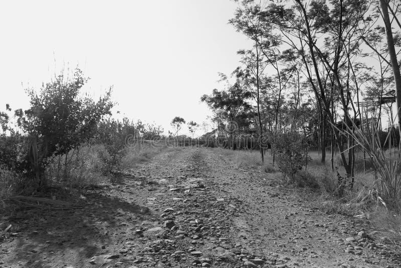 Straßen voll von Felsen lizenzfreie stockbilder