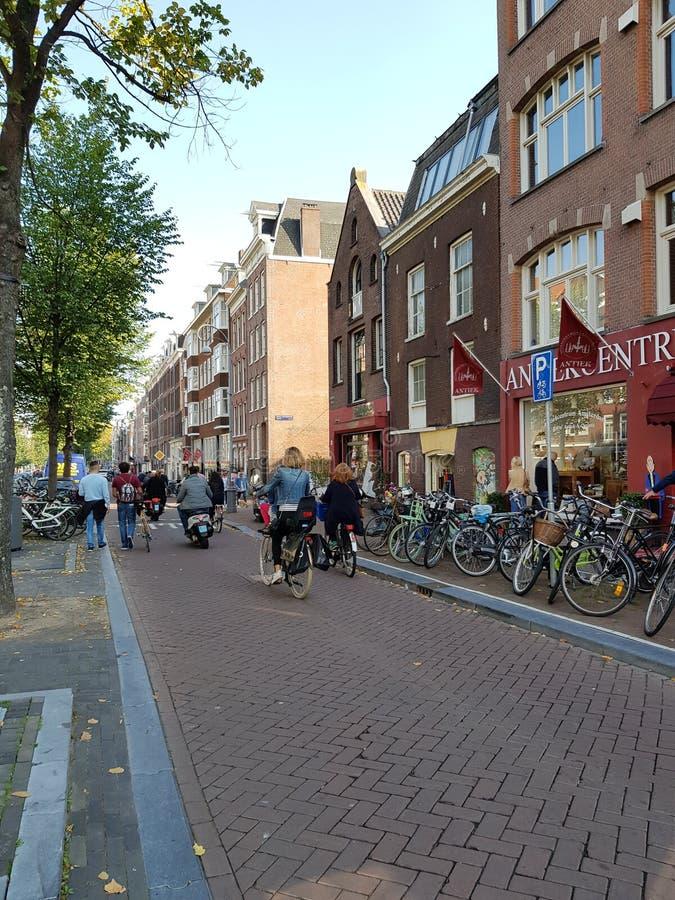 Straßen von Amsterdam an einem sonnigen hellen Tag lizenzfreies stockbild
