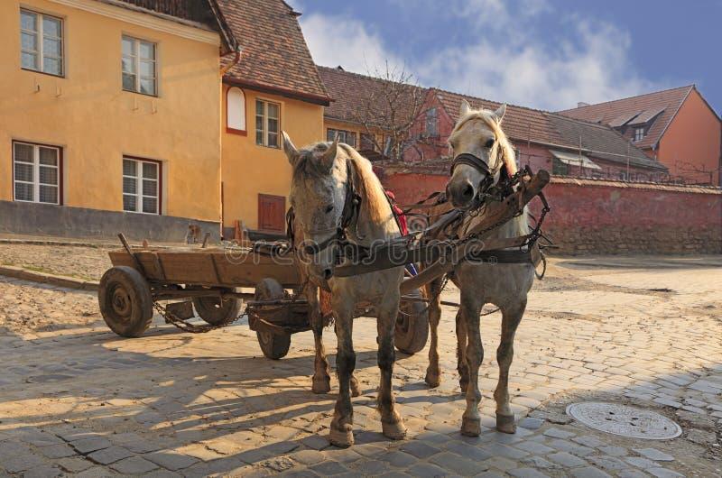 Straßen von Sighisoara-Transylvanien, Rumänien lizenzfreie stockbilder