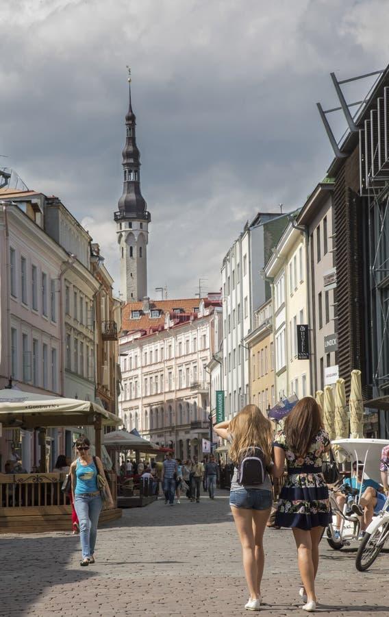Straßen von Tallinn im Sommer lizenzfreies stockfoto