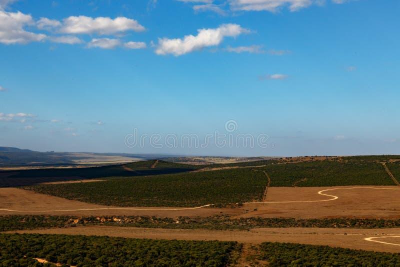 Straßen zum nowere - Addo Landscape stockfotografie
