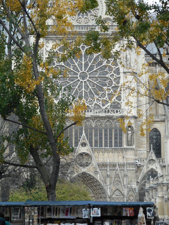 Straßenhändler und Autumn Trees vor Notre Dame Cathedral stockfoto