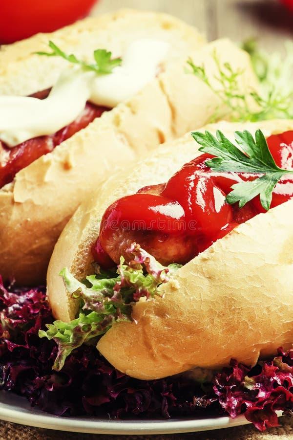 Straßenlebensmittel: Hotdoge mit gegrillten Würsten, Ketschup, Majonäse lizenzfreie stockfotografie