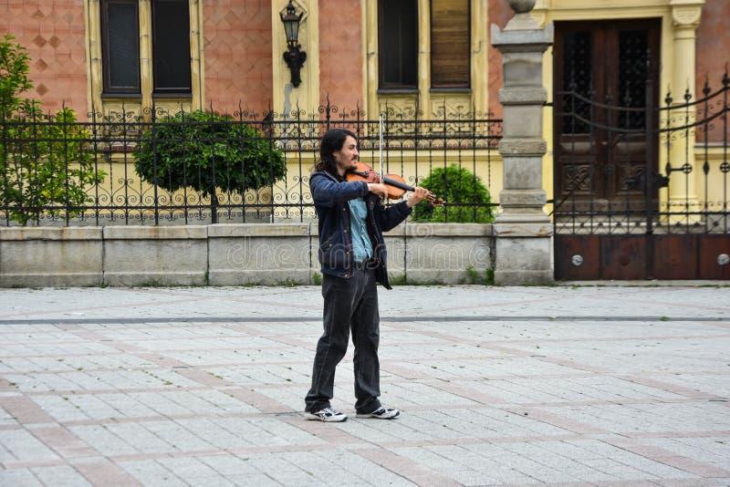 Straßenmusiker in Novi Sad M?nnlicher Musiker, der Violine spielt stockfoto