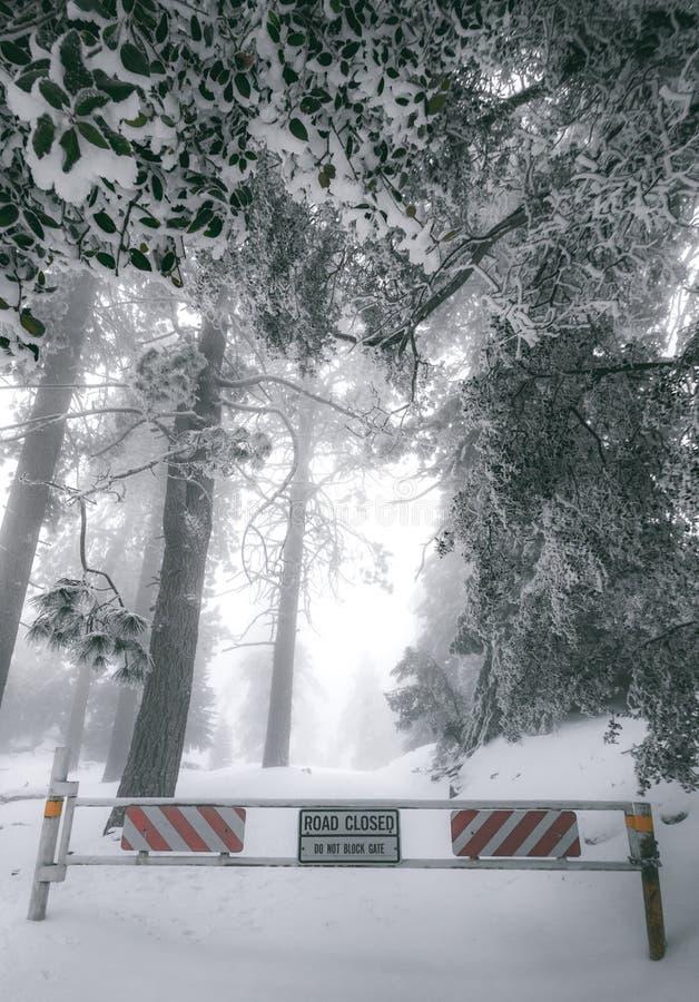 Straßensperrungs-Tor einer Gebirgsstraße, die im Schnee bedeckt wurde und durch Schnee umgeben war, bedeckte Bäume Herein gefunde lizenzfreies stockfoto