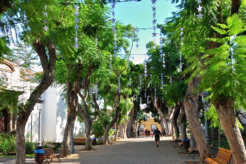 Straßenszene, Icod de Los Vinos stockfoto