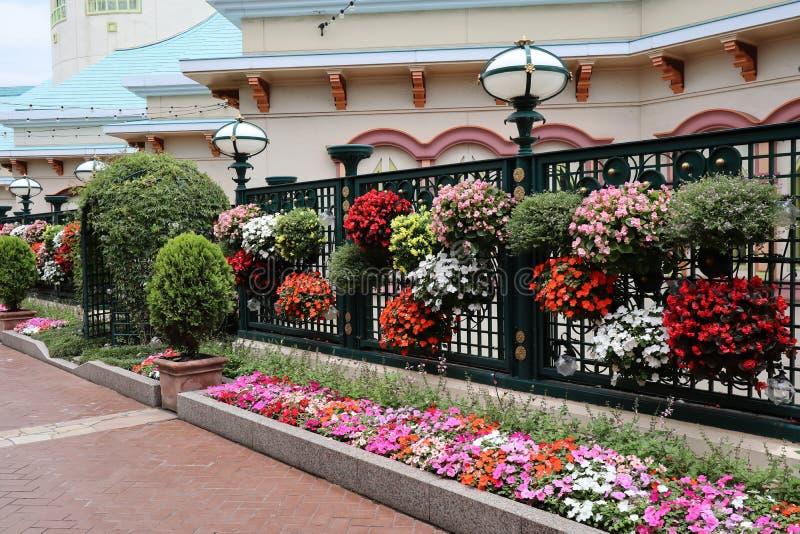Straßenwand mit bunten Blumen stockfotografie