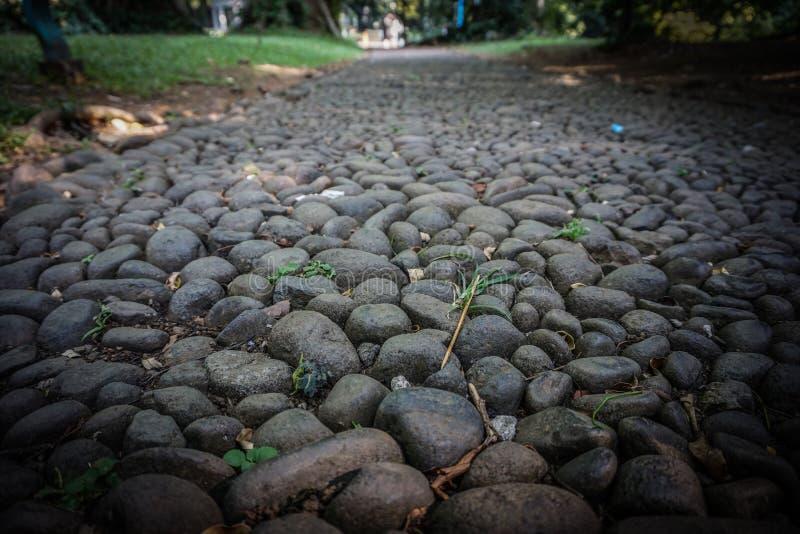 Straßenbahn oder -wege von der schwarzen Steinstruktur auf dem grünen Parkgarten in Indonesien stock abbildung