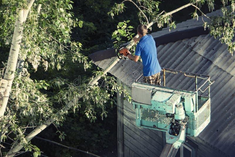 Strażacy na extendable dźwigowych rozcięcie gałąź drzewo po ciężkiego opad śniegu ze względów bezpieczeństwa fotografia royalty free