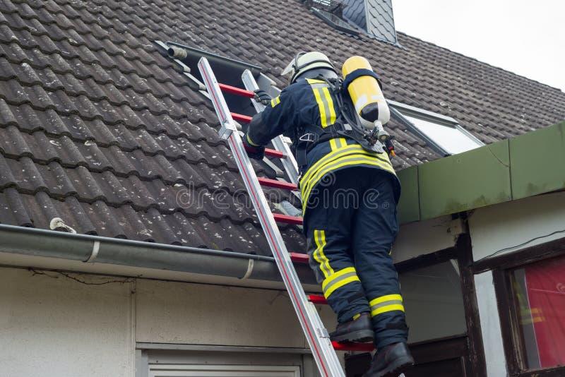 Strażak w akcji i gasi mieszkanie ogienia - Seria strażak zdjęcie royalty free