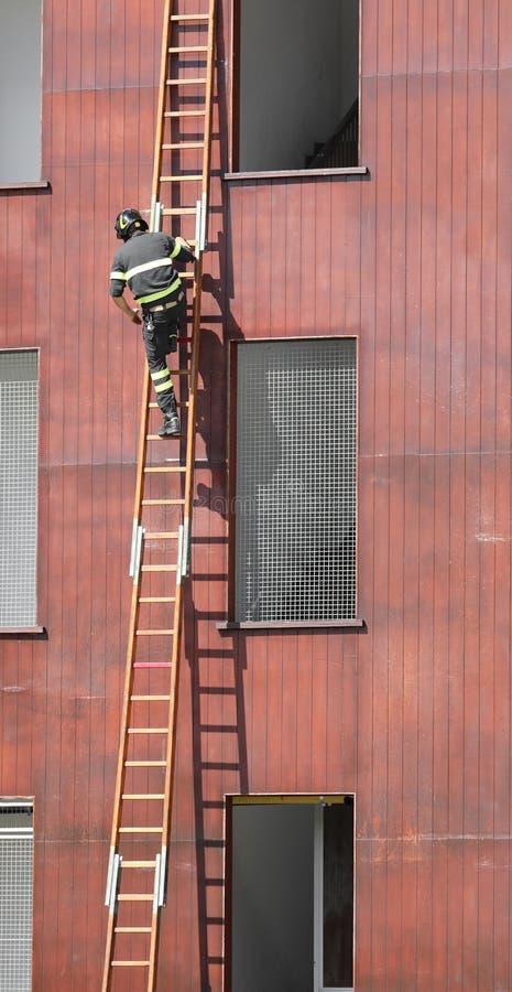 strażak w akcji na drewnianej drabinie zdjęcia stock