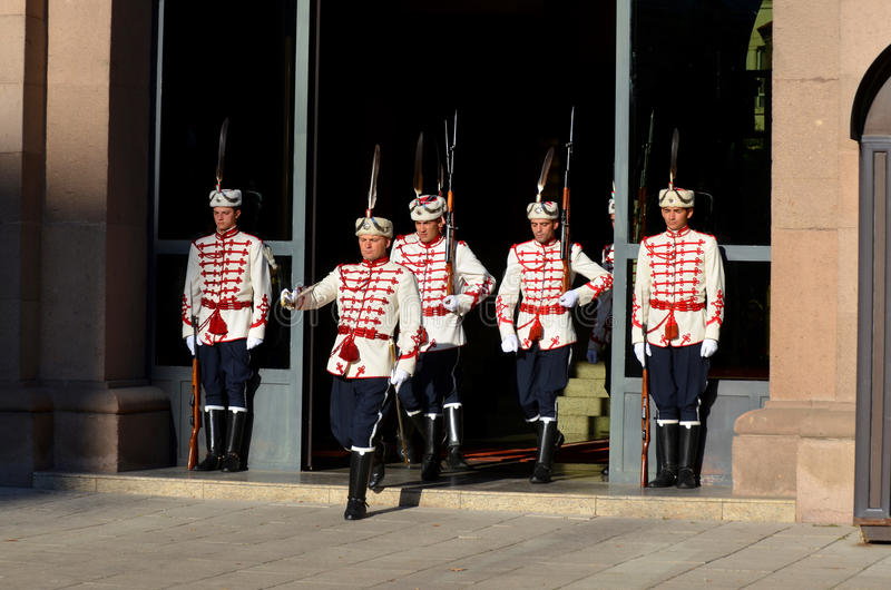 Strażnicy honor obrazy royalty free