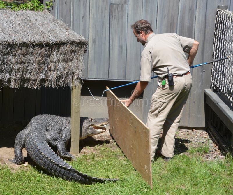 Strażnik Granby zoo fotografia stock