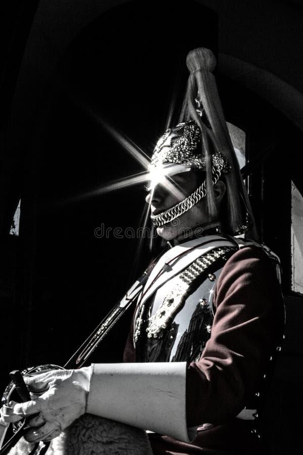 strażowy koński królewski zdjęcia stock