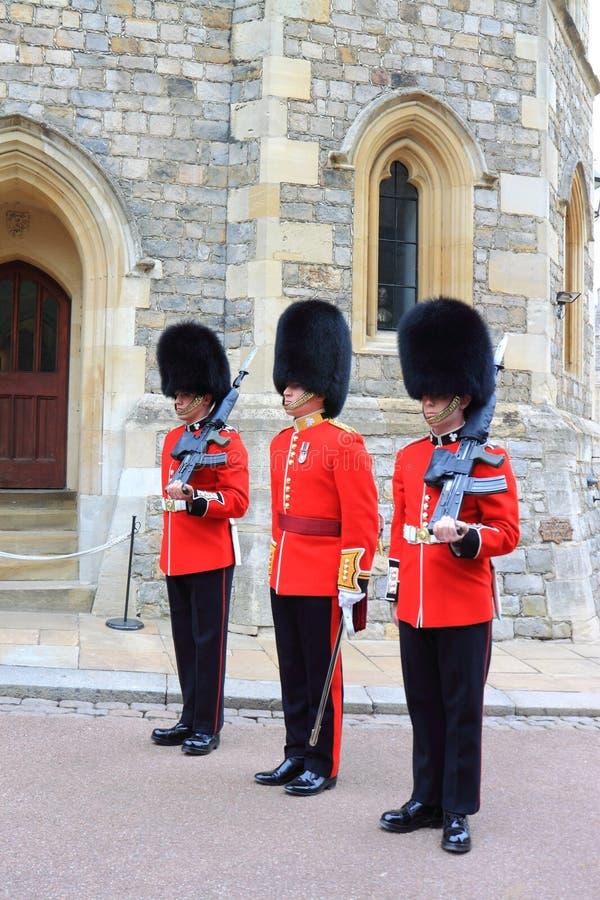 strażowy królewski zdjęcia royalty free