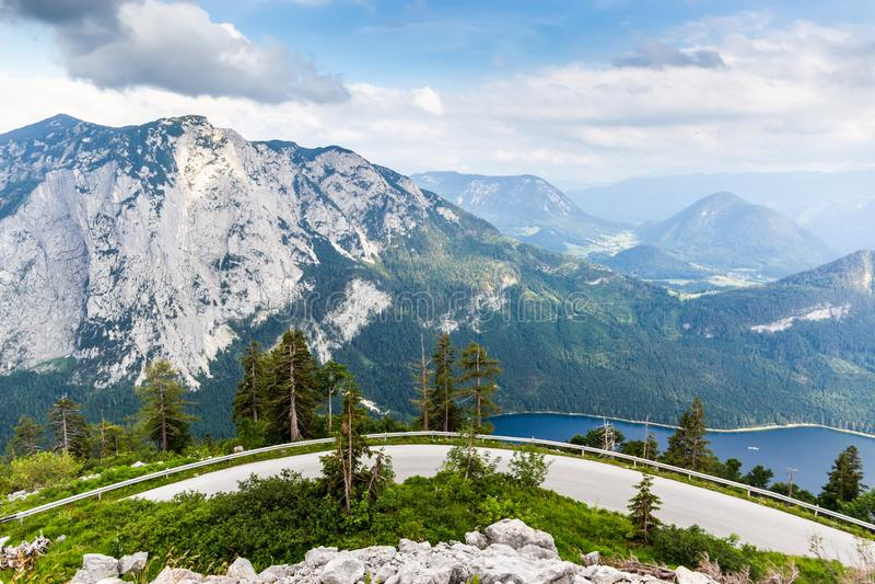 Stra?e in den ?sterreichischen Alpen Baum auf dem Gebiet lizenzfreie stockfotografie