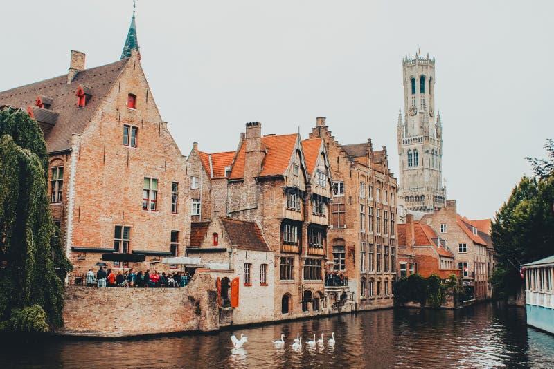 Straat in Brugge België door de rivier Zwyn met drie zwanen wordt gekruist, die de klokketoren overzien die royalty-vrije stock afbeelding