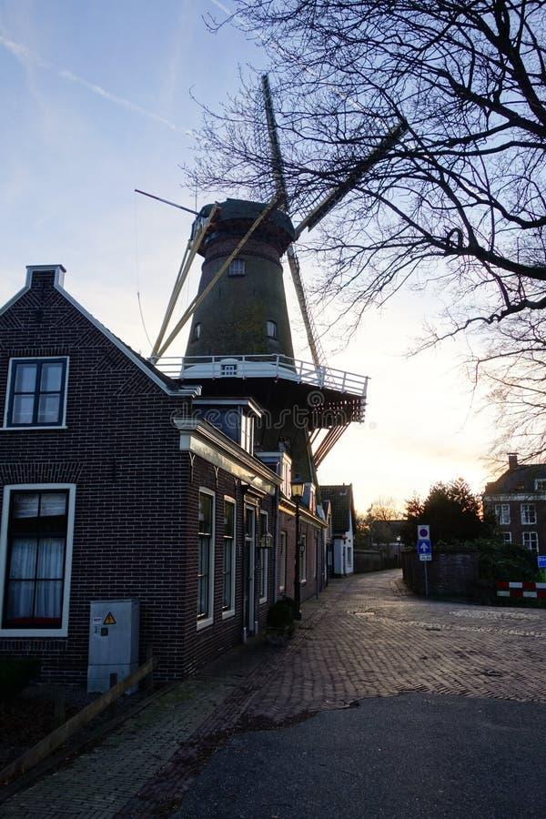 Straat in Holland met windmolen royalty-vrije stock foto's
