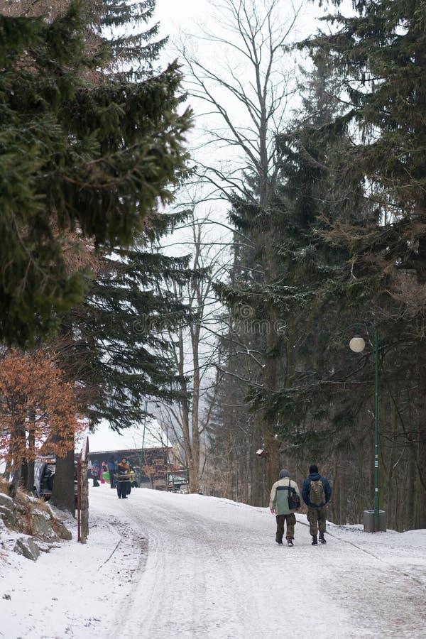 Straat in Karpacz in de winter royalty-vrije stock foto's