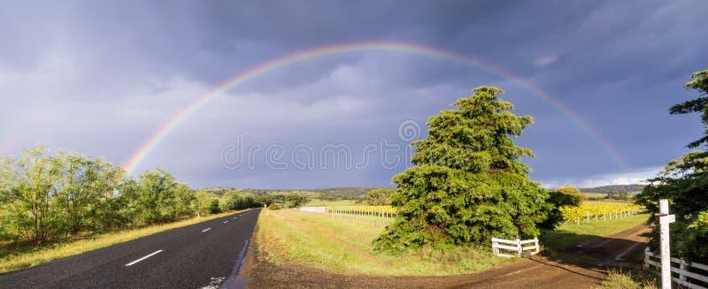 Straat met wijngaard en regenboog in Tasmanige, Australië stock afbeeldingen