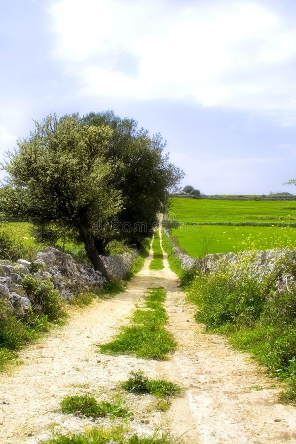 Straat, in Siciliaanse landsc stock afbeeldingen