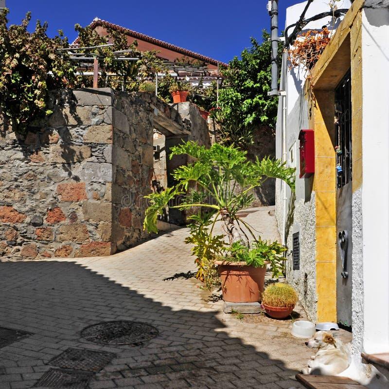 Straat van Fataga, Gran Canaria, Spanje stock foto's