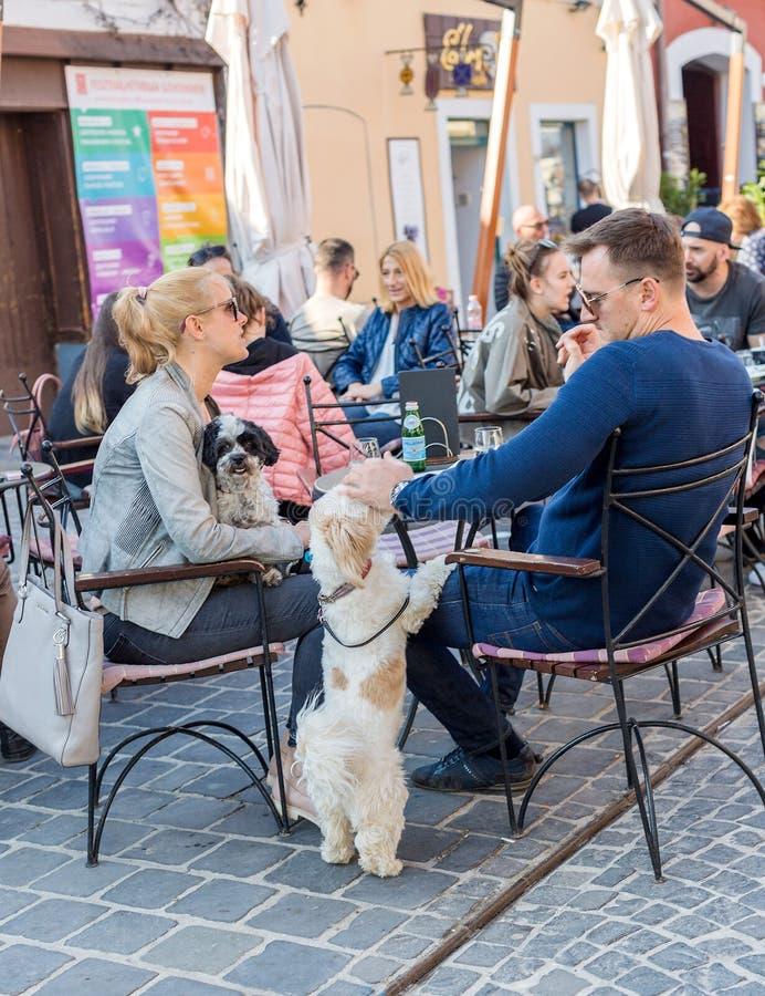 Straatkoffie, familie met honden het rusten De man die het hoofd van de hond, hond tikken die zich op achterste benen bevinden, a stock afbeelding