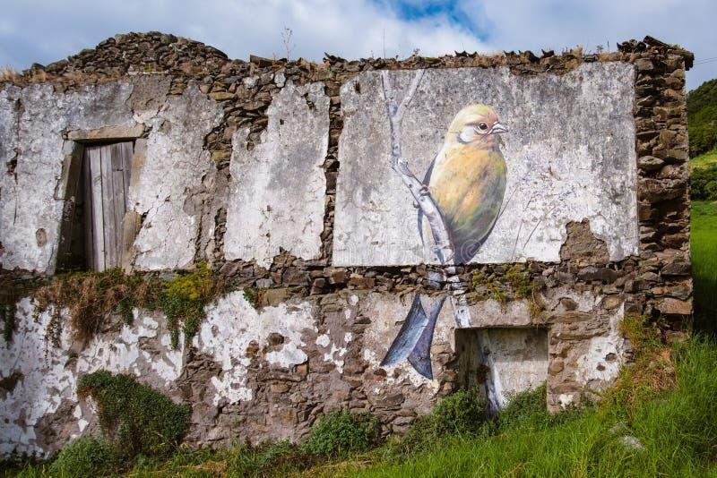 Straatkunst in het Eiland van Flores - van de Azoren stock foto