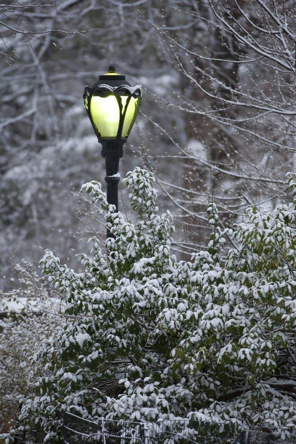 Straatlantaarn in een sneeuwonweer royalty-vrije stock fotografie