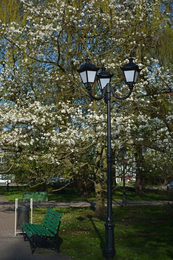 Straatlantaarn en de bank in het park royalty-vrije stock fotografie