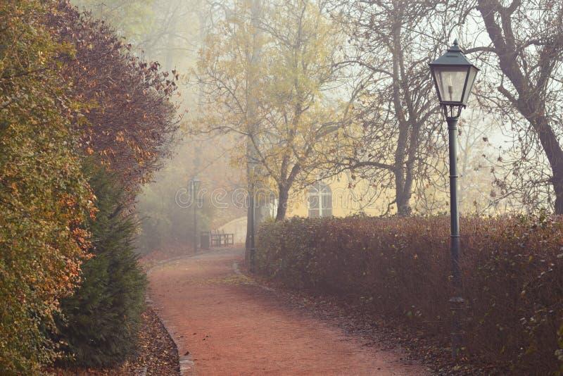 Straatlantaarn en voetpad in de mistige herfst royalty-vrije stock afbeelding
