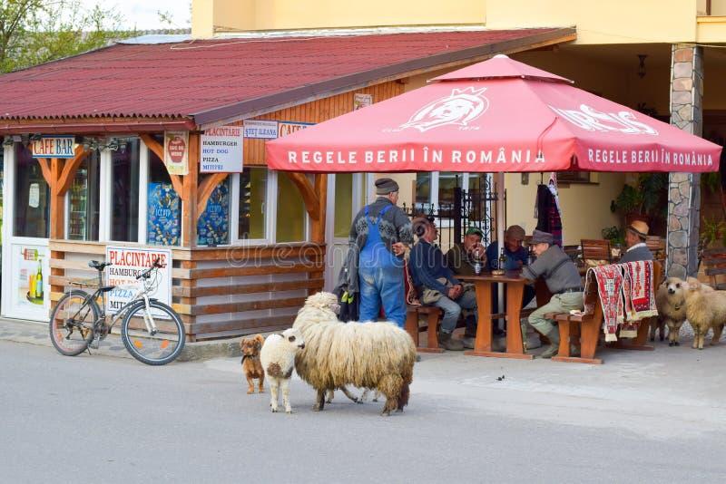 Straatmening van traditioneel Roemeens dorp, Sapanta, Maramures, Roemenië royalty-vrije stock foto's