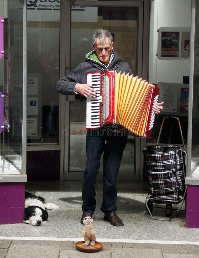 Straatmusicus met zijn hond stock afbeelding