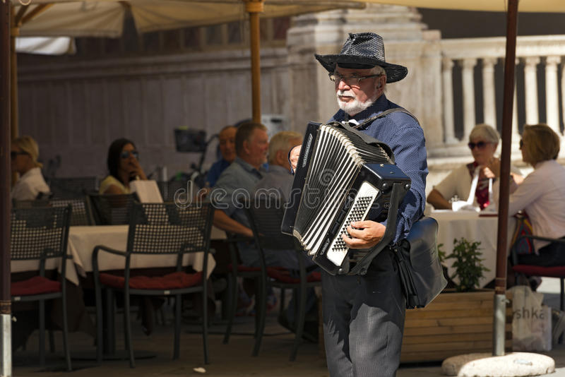 Straatmusicus Plays de Harmonika in Verona royalty-vrije stock fotografie